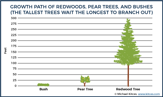 Bushes, Pear Trees, and Redwoods